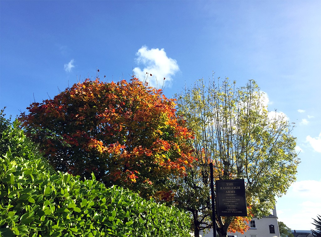 Autumn in Cornwall
